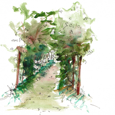 CHEMIN MYSTERIEUX.png