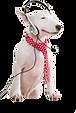 犬の義足説明ページ犬のイラスト