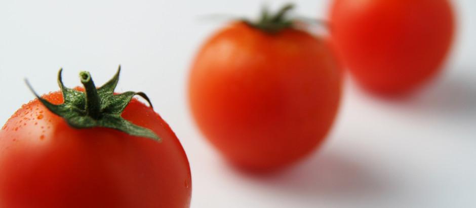 Käsekrapfen auf Tomatensahne