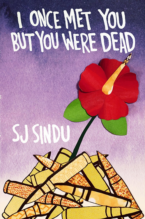I Once Met You But You Were Dead by SJ Sindu