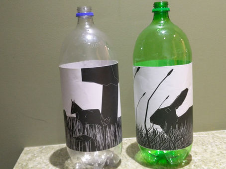 AR in a Bottle: Students Discover and Create New Digital Worlds at XR Marin