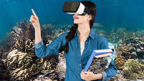 Marin Teachers Take a Deep Dive Using VR to Help Understand Challenges Facing Our Oceans