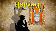 Harvey _Thumb 9 Reduced.png