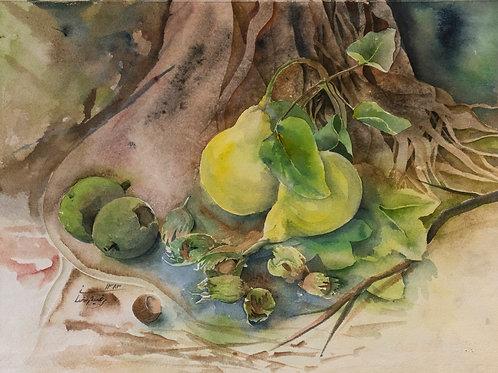 Green Fruits by Marziyeh Ramezani