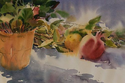 Autumnal Fruits by Marjan Modarresi