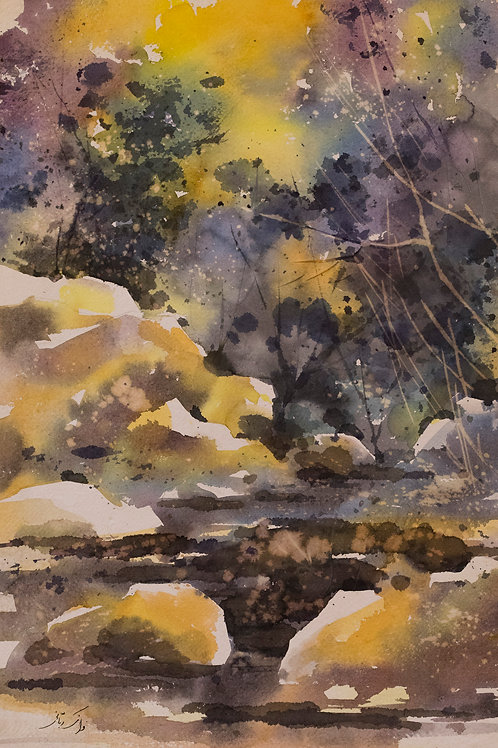 Nature's Illumination by Faranak Ashraf Rabbani