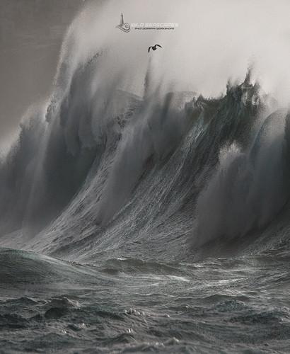 Wave Rage II