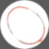 波若亞士羽毛球拍 | PROACE SDS 300