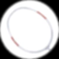 波若亞士羽毛球拍 | PROACE PLATINUM 350