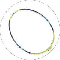 波若亞士羽毛球拍 | PROACE SDS 250