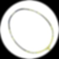 波若亞士羽毛球拍 | PROACE VORTEX 90