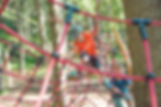 DSC_2798.jpg