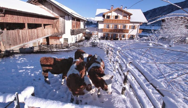 Bauernhof Winter