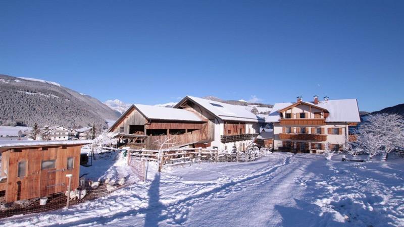 Schöneggerhof Winter