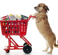 dog shopping cart.jpg