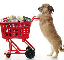 dog shopping cart.jpg