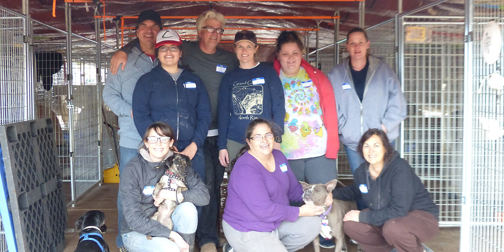 Volunteer Day at the Ranch