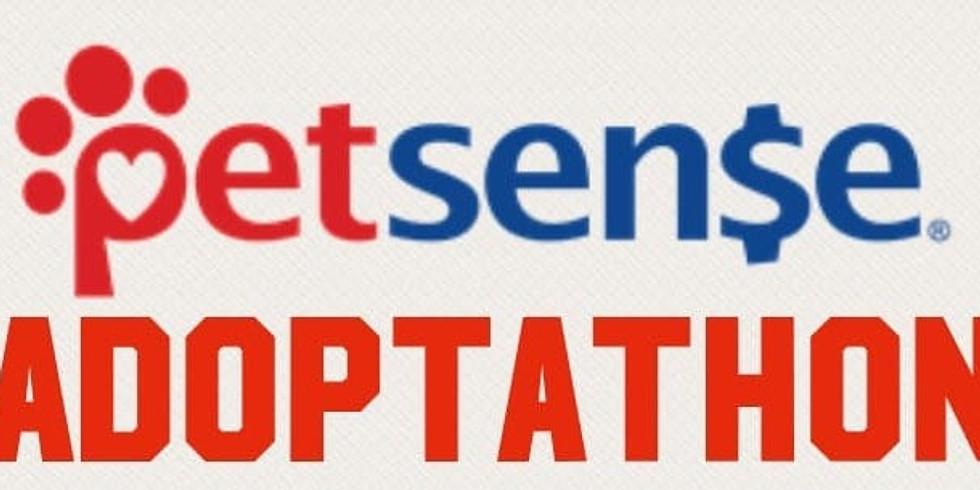 Petsense Fall Adoptathon