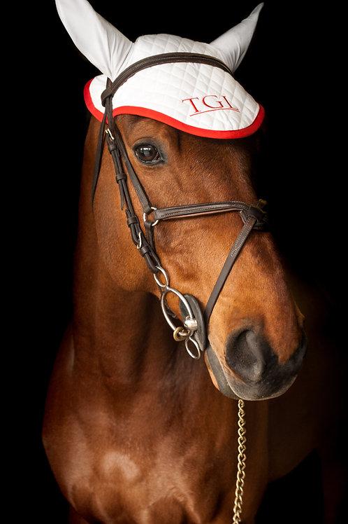 TGLHP Horse Bonnet