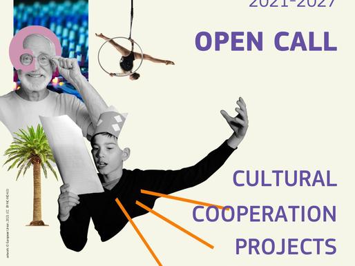 Աջակցություն Եվրոպական համագործակցության նախագծերին 2021 (ընթացիկ)