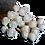 Thumbnail: Dozen - Seashell Roses