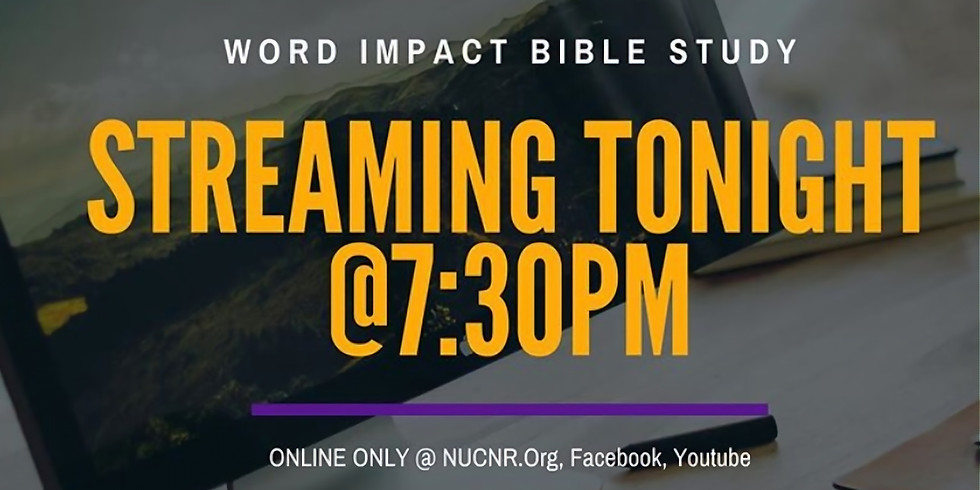 Impact Bible Study