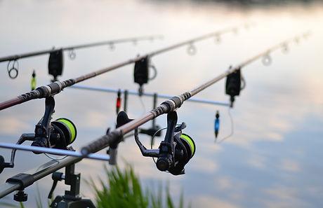 fishing-3302535_1920.jpg