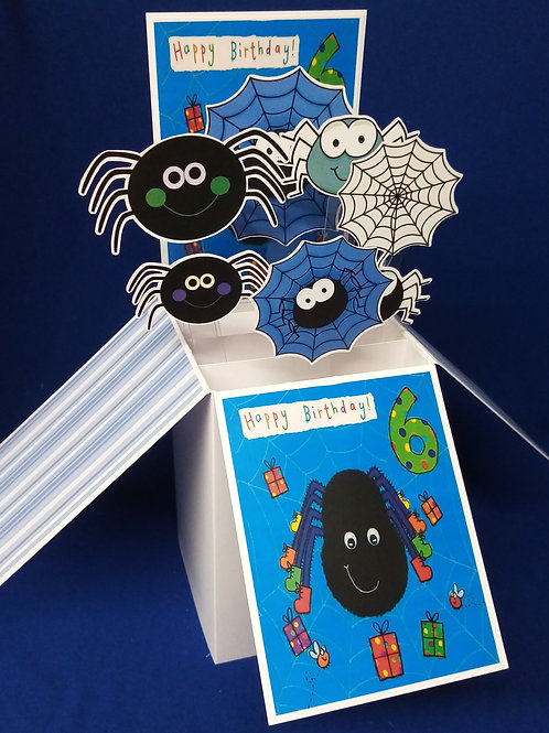 Boys 6th  Birthday Card with Spiders