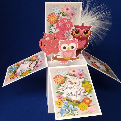 Ladies Birthday Card with Owls
