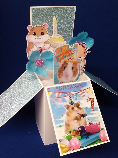 Girls 7th Birthday Card with Hamsters