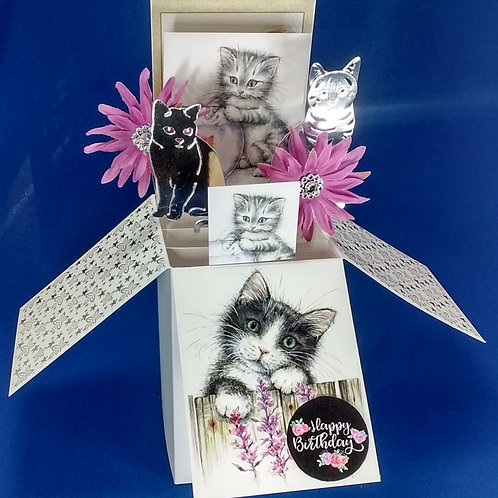 Ladies Birthday Card with Cats