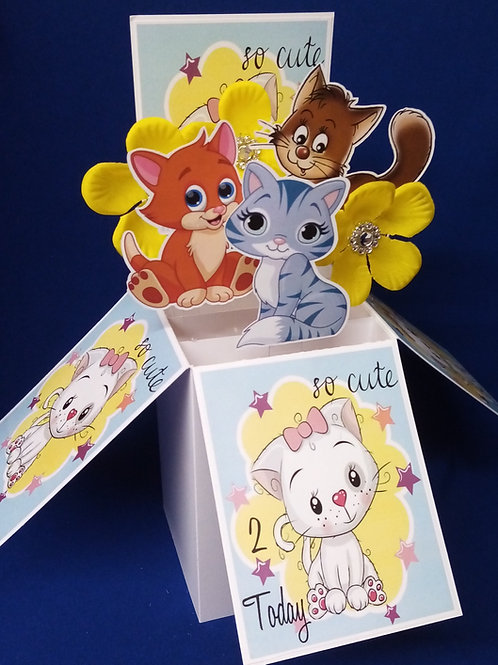 Girls 2nd Birthday Card with Cats