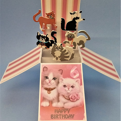 Girls 6th Birthday Card with Cats