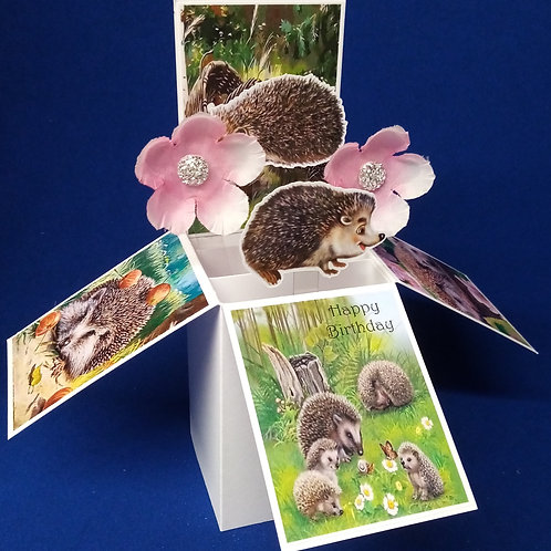 Birthday Card with Hedgehogs