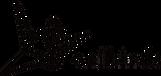 oribirds logo name.png