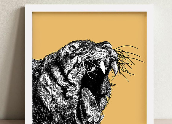Tiger Framed Print 10 x 10""