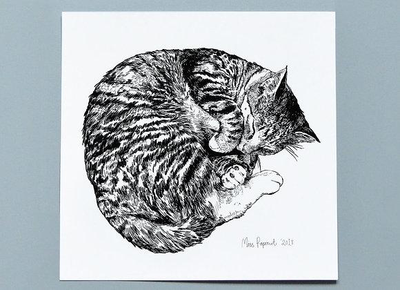 Illustrated Sleeping Cat Print