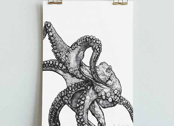 Illustrated Octopus Print (A4 / A3)