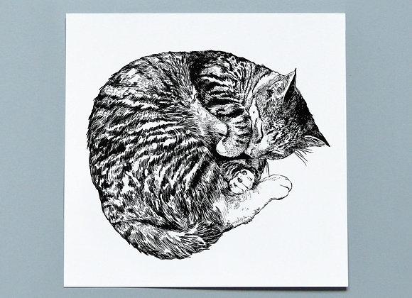 "Sleeping Cat Illustrated Print (8x8"" / 10x10"")"