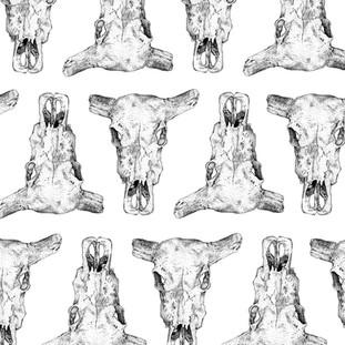 Buffalo Skull Pattern