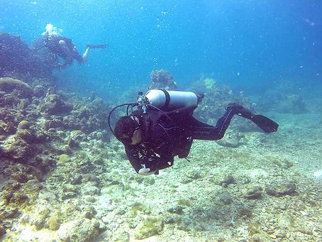 Two great dive sites
