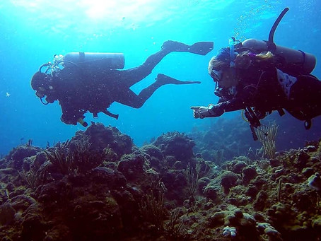 Great Diving for Cruise Ship Passengers