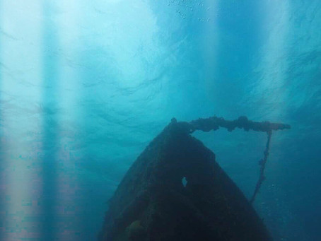 Excellent two tank dive