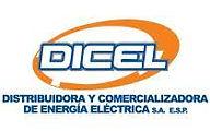 Cliente Solytec S.A.S. Dicel.