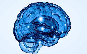 neurologia-roma.jpg