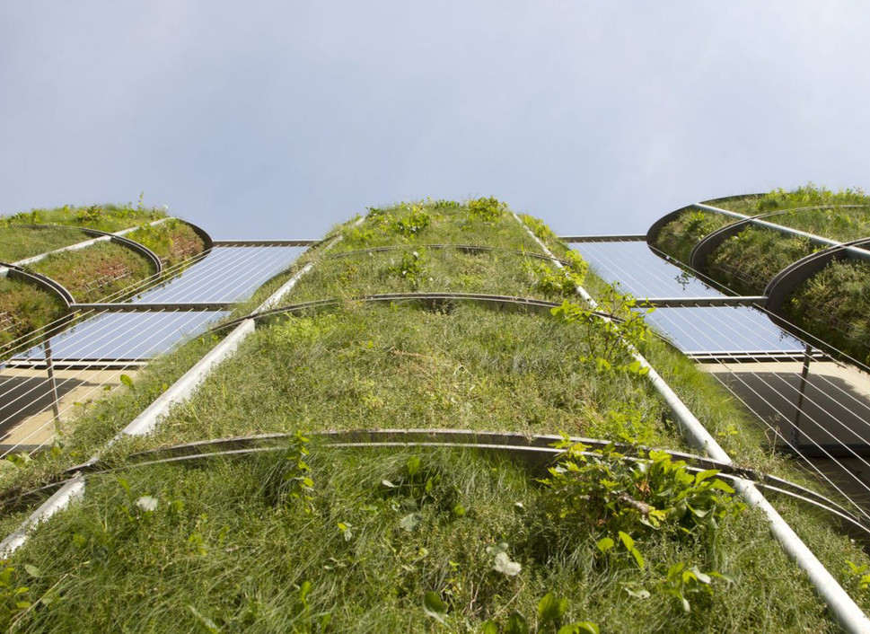 Standing-Garden-Arnhem-2-scaled.jpg