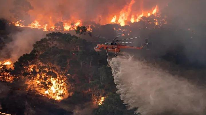 Bosbranden Australië (26).jpg