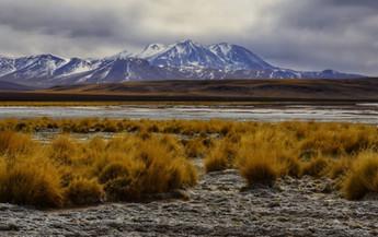 Alto Loa National Reserve-1.JPG