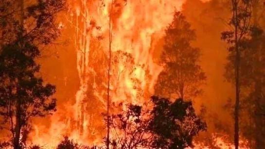 Bosbranden Australië (28).jpg