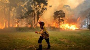 Bosbranden Australië (10).jpg